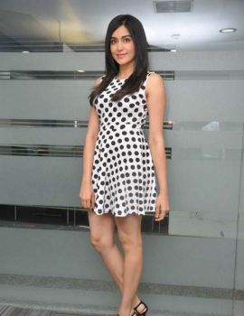 Adah Sharma at Kshanam Press Meet Photos