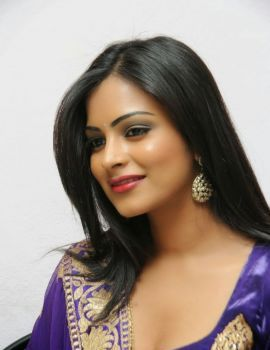 Akanksha at Geetha Movie Platinum Disc Function