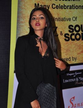 Amala Paul Stills at South Scope Lifestyle Awards 2016 Red Carpet