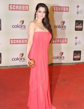 Ameesha Patel at 18th Annual Colors Screen Awards