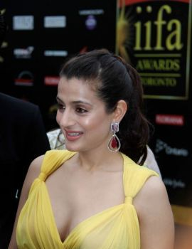 Ameesha Patel at IIFA Award Function