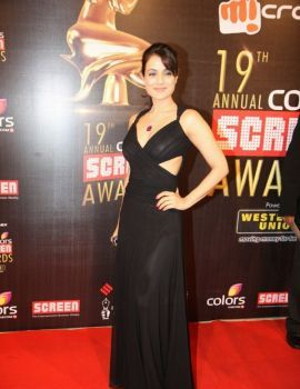 Ameesha Patel at the 19th Annual Colors Screen Awards in Mumbai