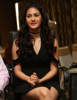 Actress Amyra Dastur Stills at Kungfu Yoga Movie Press Meet