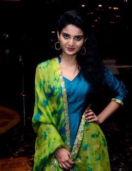 Vakeel Saab Actress Ananya Nagalla Latest Photos