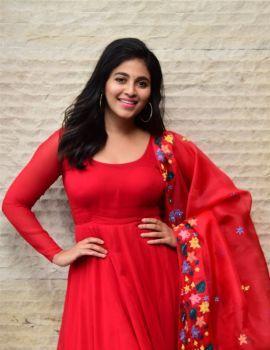 Anjali Photos at Vakeel Saab Movie Success Meet