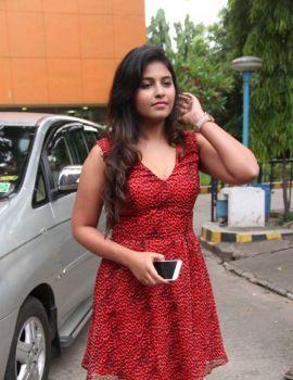 Anjali Stills At Sakalakala Vallavan Appatakkar Movie Press Meet