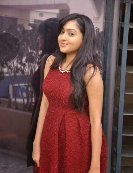 Telugu Heroine Anjana Deshpande at Nenu Naa Friends Movie Press Meet
