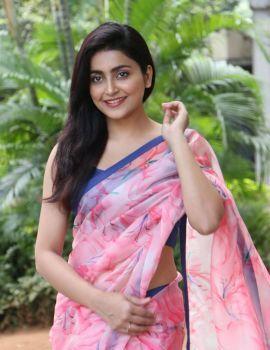 Avantika Mishra Stills at Meeku Maathrame Cheptha Success Meet