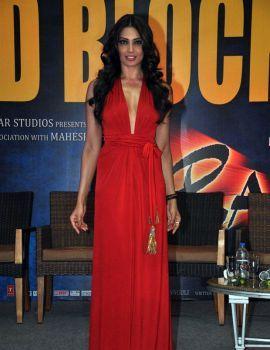 Bipasha Basu Stills at Raaz 3 Movie Success Meet