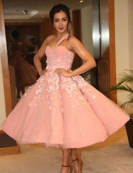 Actress Catherine Tresa Stills At 64th Filmfare Awards 2017