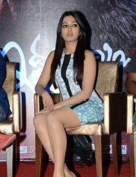 Catherine Tresa at Iddarammayilatho Movie Hexa Platinum Disc Event
