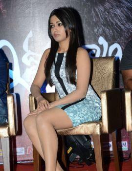 Catherine Tresa at Iddarammayilatho Movie Hexa Platinum Disc Event