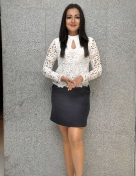 Catherine Tresa at Sarrainodu Movie Success Meet