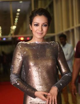 Catherine Tresa Stills at Gautham Nanda Movie Audio Launch