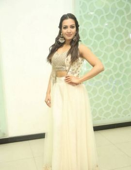 Catherine Tresa Stills At Gautham Nanda Success Meet