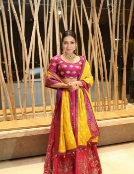Catherine Tresa Stills at World Famous Lover Movie Pre Release Function