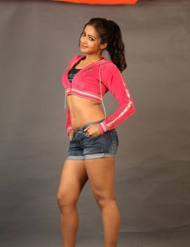 Iddarammayilatho Actress Catherine Tresa Studio Shoot Stills