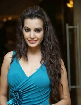 Diksha Panth at Max Miss Hyderabad 2014 Fashion Show