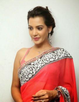 Diksha Panth at Oka Laila Kosam Audio Success Meet