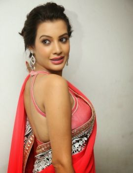 Diksha Panth at Oka Laila Kosam Audio Success Meet