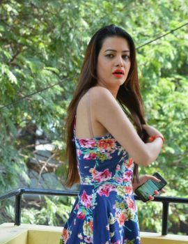 Diksha Panth Photos at Chal Chal Gurram Release Press Meet