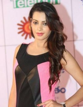 Diksha Panth Photos at Memu Saitam Dinner With Stars Red Carpet