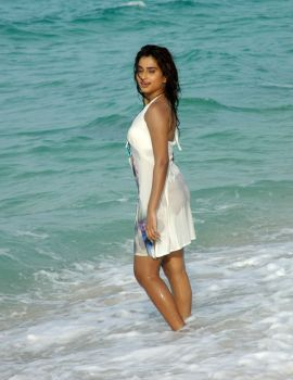 Dimple Chopade Hot Bikini Beach Stills