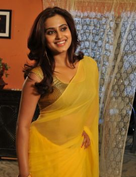 Dimple Chopade Stills in Transparent Yellow Saree