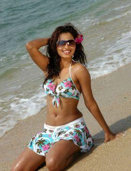 Telugu Actress Dimple Chopade Stills in Bikini