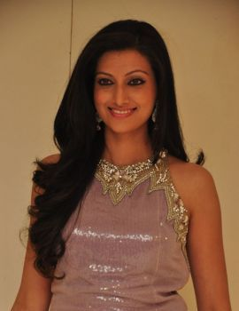 Hamsa Nandhini Latest Stills at CMR Ashadam Collections