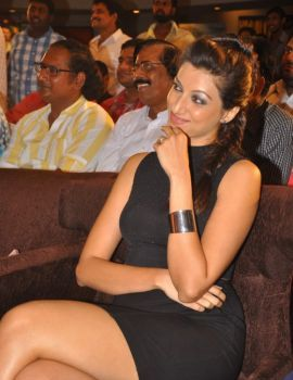 Hamsa Nandini at Ramayya Vasthavayya Audio Launch