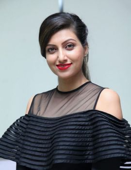 Hamsa Nandini at SA Productions