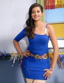 Hamsa Nandini at Tea Samosa Biscuit Movie Working Stills
