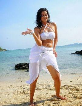 Hamsa Nandini White Bikini Stills from Adhinetha
