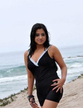 Keerthi Chawla Hot Bikini Photos on Beach