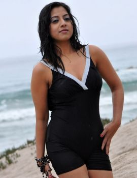 Keerthi Chawla Hot Bikini Photos on Beach