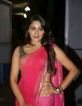 Kesha Khambhati in Pink Saree at Best Actors Movie Audio Launch