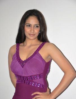 Komal Sharma at Nagaraja Cholan MA, MLA Movie Audio Release Function