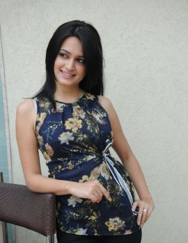 Telugu Actress Kriti Kharbanda Latest Photo Shoot Stills