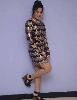 Madhavi Latha at On Mona Birthday Short Film Press Meet