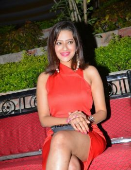 Madalasa Sharma Stills at Ram Leela Audio Success Meet