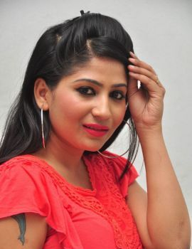 Madhulagna Das at Andala Chandamama Telugu movie press meet