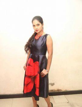 Madhumitha Stills at Bhale Bhale Magadivoy Success Party