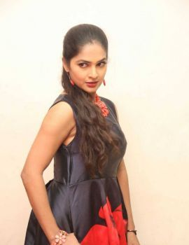 Madhumitha Stills at Bhale Bhale Magadivoy Success Party