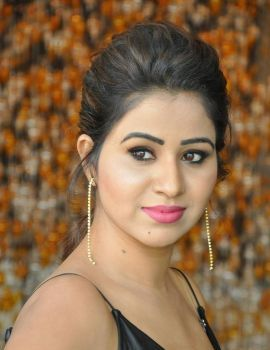 Telugu Actress Manali Rathod MLA Movie Success Meet Stills