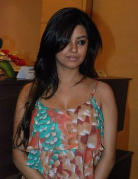 Meera Chopra at Chennai International Fashion Week Season Press Meet