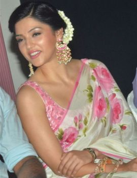 Mehreen Pirzada in Saree at Nenjil Thunivirunthal Movie Trailer Launch