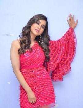 Nabha Natesh at Telugu Movie Disco Raja 3rd Song Launch Function