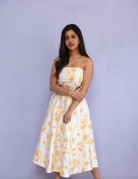 Nabha Natesh stills at Nannu Dochukunduvate movie Success Meet