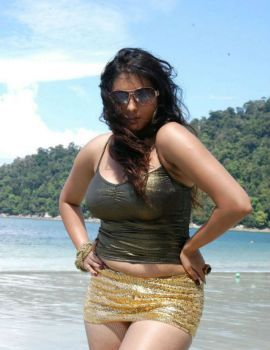 South Indian Actress Namitha in Hot Bikini